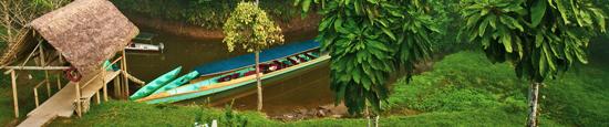 Croisiere en foret equatoriale, zone protegee de Panacocha