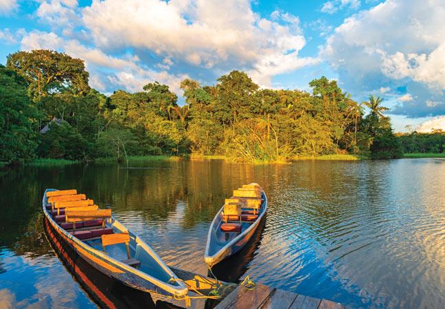 Croisière en forêt équatoriale : le Rio Napo et le parc National Yasuni